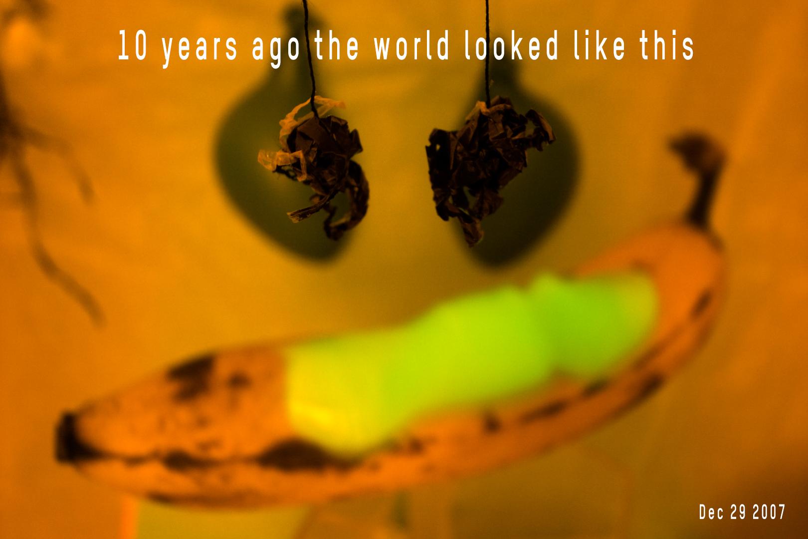 R0017969 29-12-07 Bananas Small Ago