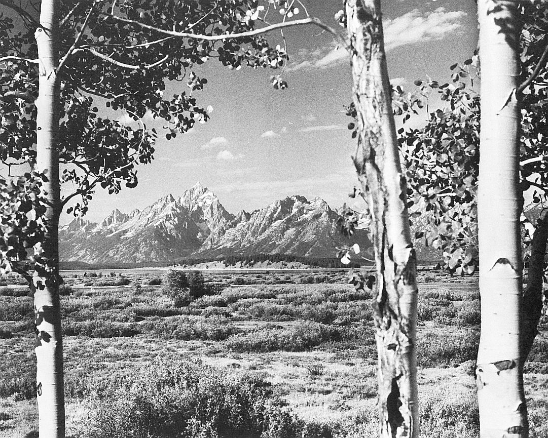 Fpw_10_Grand Teton National Park, Wyoming_Donald M. Witte_sqs